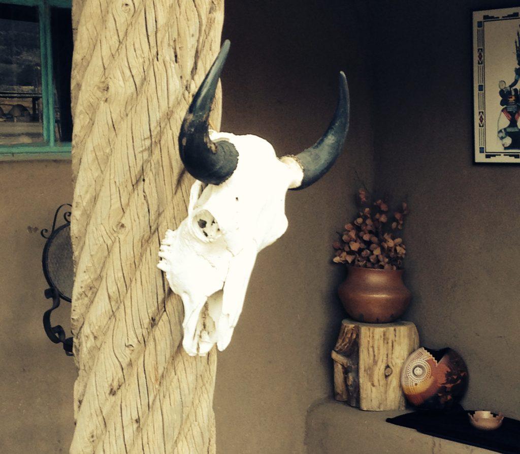 Cow skull found in the Taos Pueblo