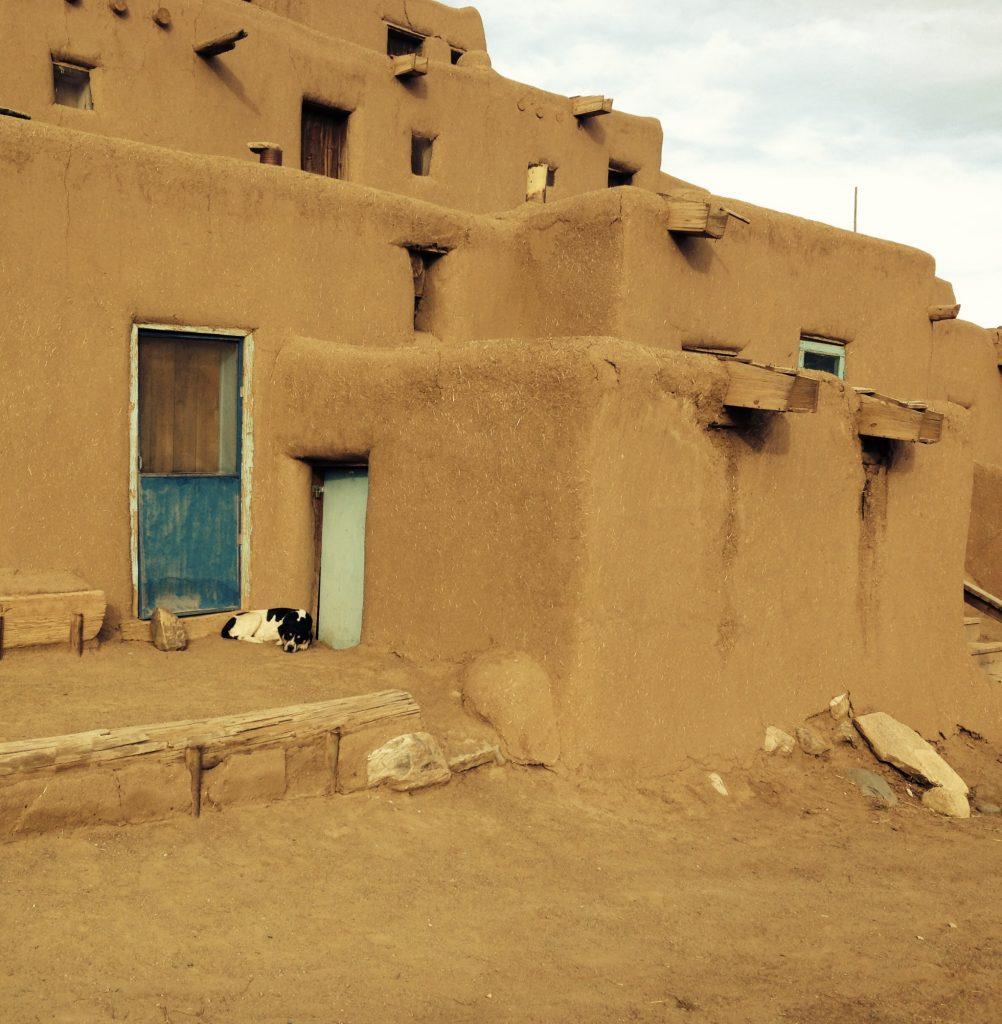 Sleeping dog by desert pueblos