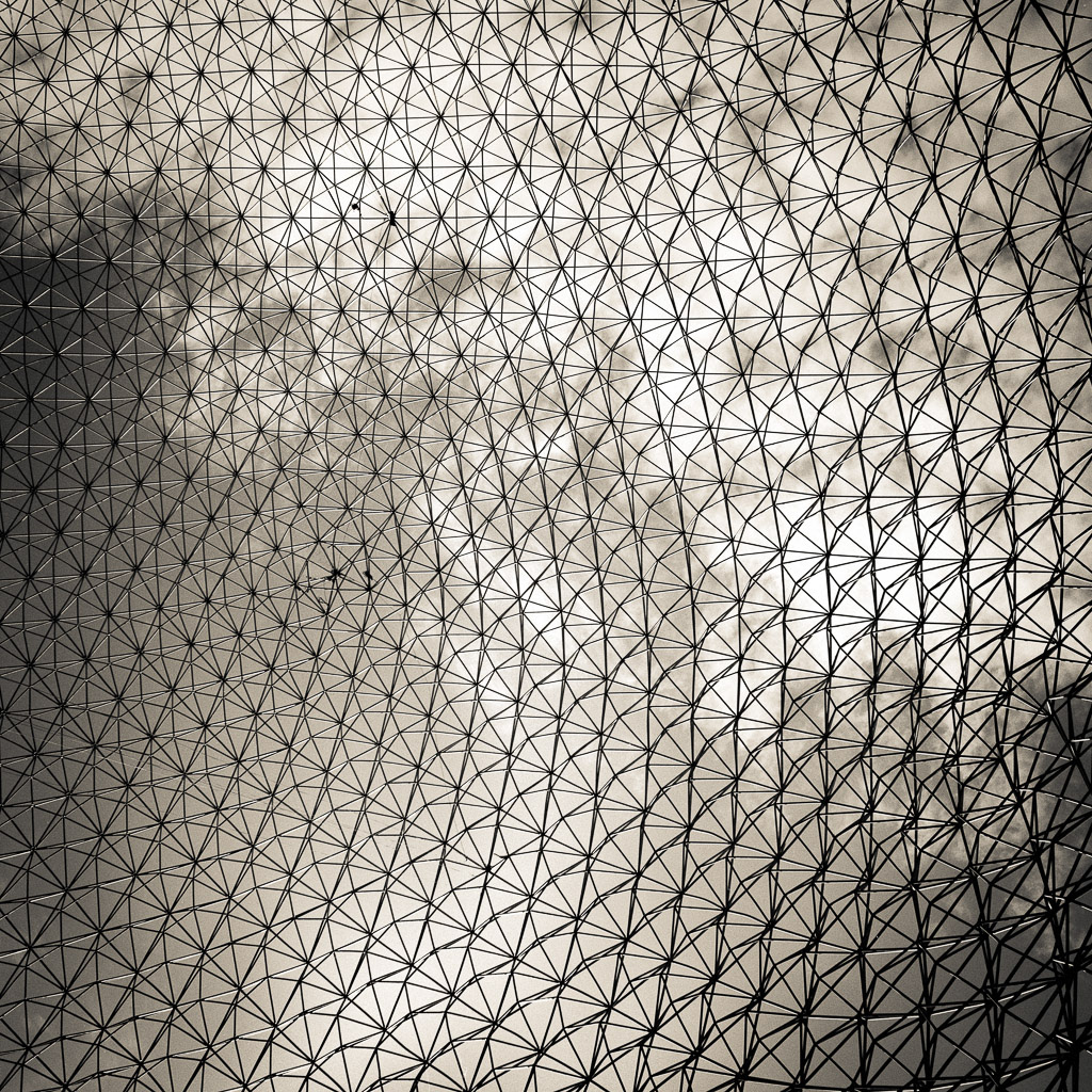Biosphere grid.