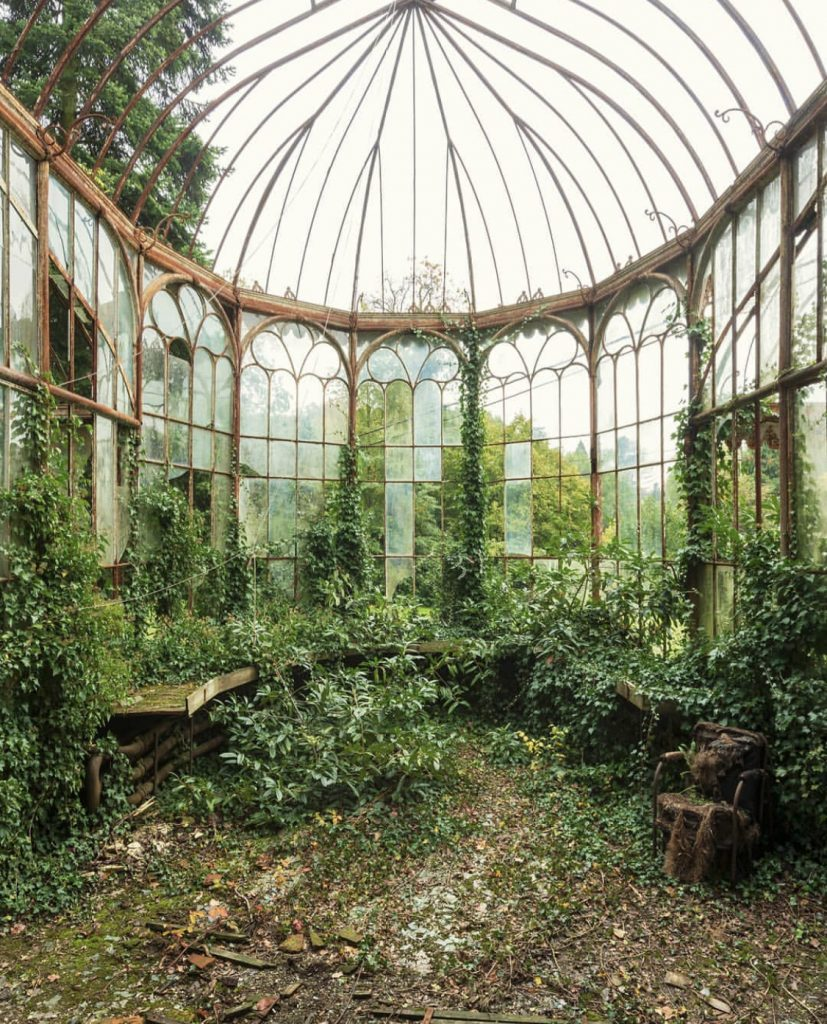 À rebours by Nicola Bertellotti. Nature overrunning a room filled made of windows.