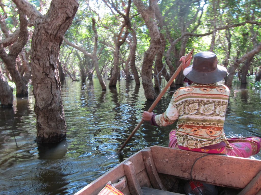Floating Forest Tonle Sap Lake