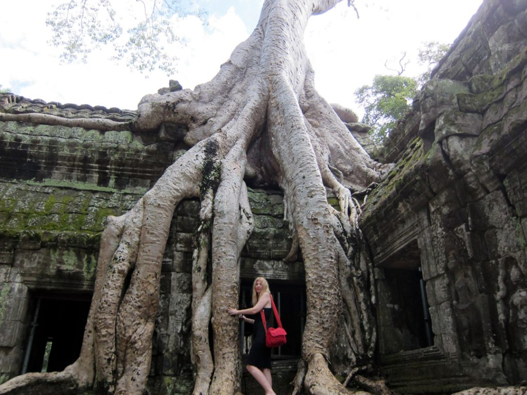 Between the tree roots at Ta Prohm in Cambodia.