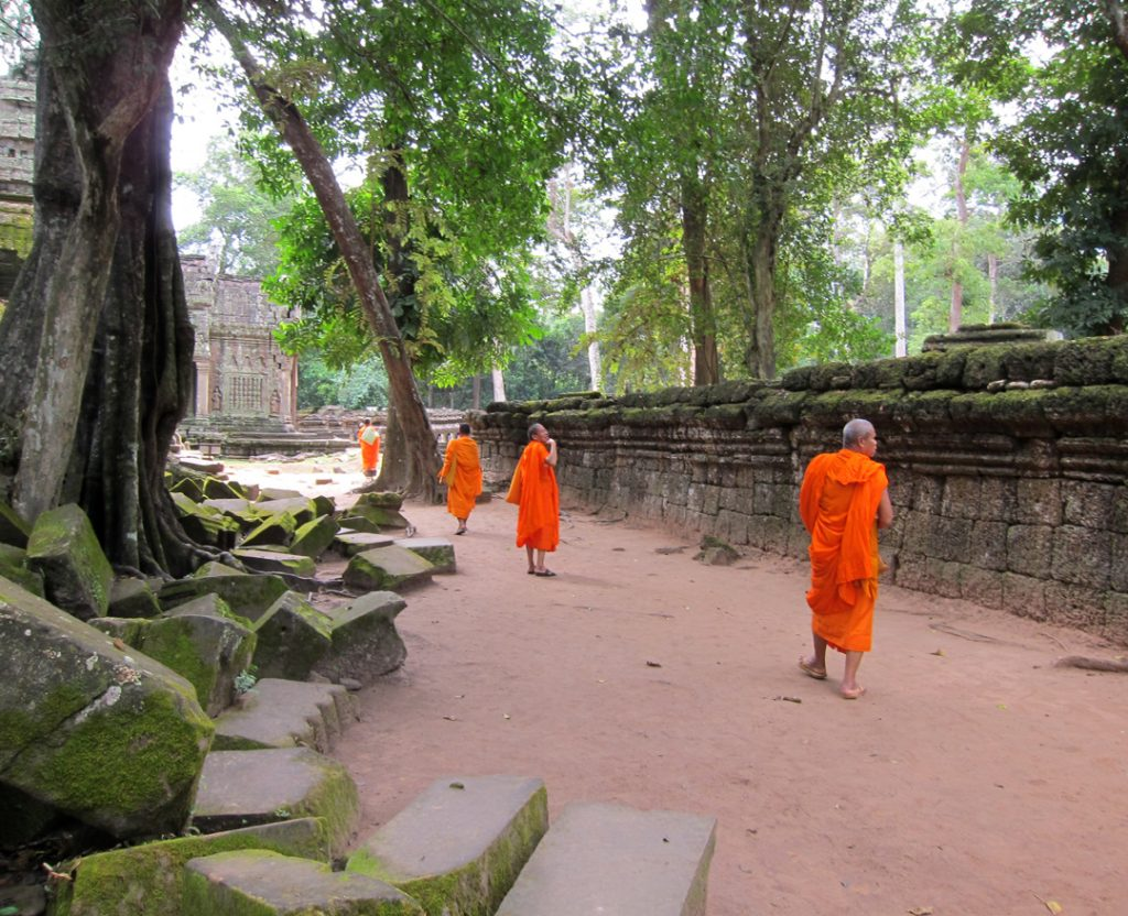 Monks in http://tree-alliance.org/our-restaurants/romdeng.php?mm=or&sm=rd