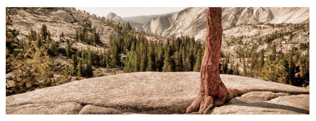 Yosemite Horst Hamann, copyright.