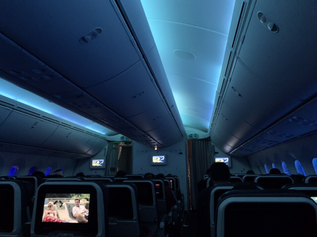 Travel in 2021 - Turkish airlines